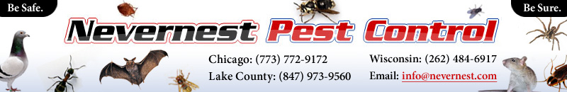 Chicago Pest Control
